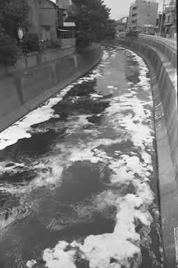 写真 水質汚染(9)